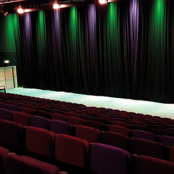 De Bonte Wever theaterzaal